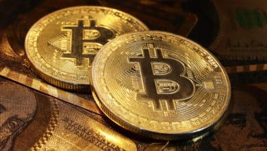 Как заработать 1 биткоин без вложений